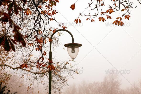 PhotoDune old lantern in morning park 4102185