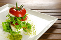 Caprese salad, traditional italian appetizer - PhotoDune Item for Sale