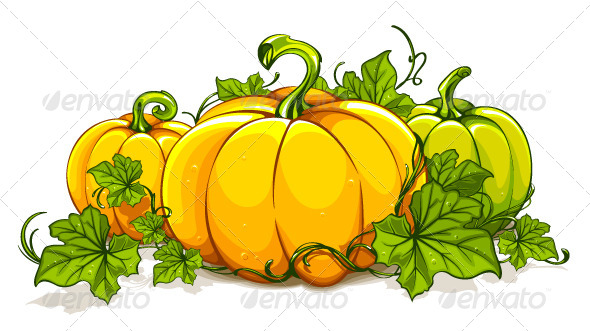 GraphicRiver Pumpkins Isolated on White 4075598
