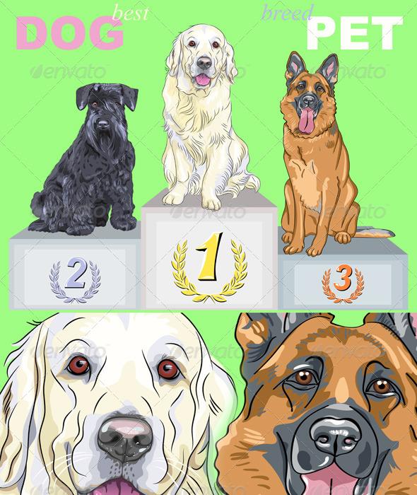 GraphicRiver Vector Happy Dog Champion on the Podium 4079648