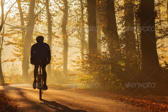 PhotoDune Silhouette of a biker in autumn 4111536