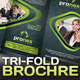 Pronex Tri-fold Corporate Business Brochure - GraphicRiver Item for Sale