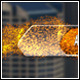 Particle Shake Lower Third - VideoHive Item for Sale