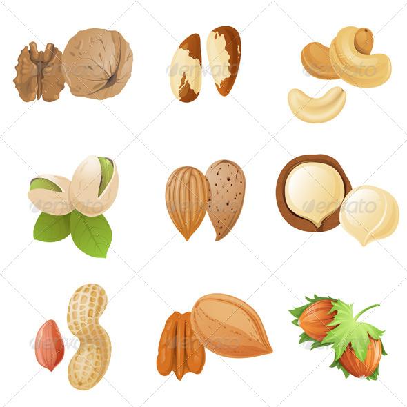 Walnut Vector » Dondrup.com