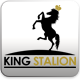 King Stallion King Logo Template - GraphicRiver Item for Sale