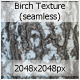 Brich Texture (seamless) - 3DOcean Item for Sale