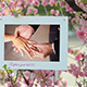 Photo Gallery and Cherry Blossoms - VideoHive Item for Sale