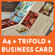 A3 + A4 Trifold Brochure + Business Card - GraphicRiver Item for Sale