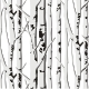Birch Pattern 2 - GraphicRiver Item for Sale