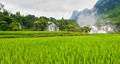 Rice field and waterfall - PhotoDune Item for Sale