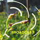 Radio Tower Plant - VideoHive Item for Sale