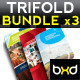 Trifold Brochures Bundle - InDesign Layout 01 - GraphicRiver Item for Sale