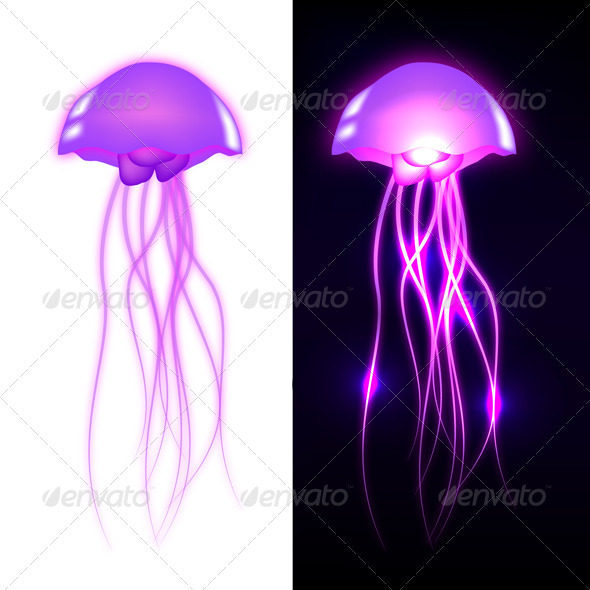 Graphic River Vector Jellyfish Vectors -  Characters  Animals 530332