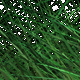 Blowing Grass - VideoHive Item for Sale