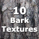 10 Seamless Tileable Bark Textures - GraphicRiver Item for Sale
