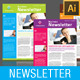 2 Pages Multi-purpose Business Newsletter - GraphicRiver Item for Sale