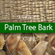Palm Tree Bark Surfaces Texture Backgrounds - GraphicRiver Item for Sale