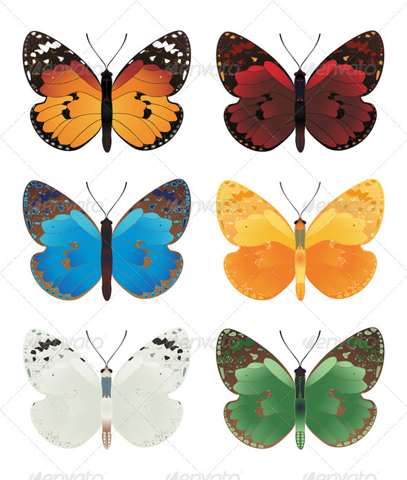 Graphic River Butterfly Vectors -  Characters  Animals 546787