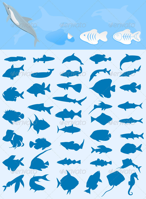 Graphic River Collection of fishes Vectors -  Characters  Animals 546790
