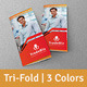 Multi-purpose Tri-Fold Brochure | Volume 14 - GraphicRiver Item for Sale