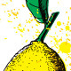 Lemon Drawing - GraphicRiver Item for Sale