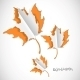 Autumn Paper Cut Background with Leaves - GraphicRiver Item for Sale