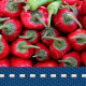 Pepper 2 - VideoHive Item for Sale