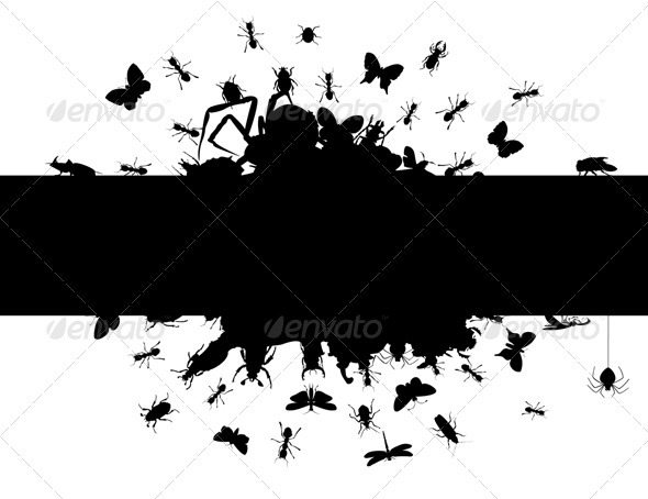 Graphic River Frame of insects Vectors -  Characters  Animals 558818