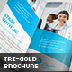 Trustx - Corporate Tri-fold Brochure - GraphicRiver Item for Sale