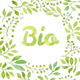 "Word ""Bio"" in Watercolor Leaves Wreath - GraphicRiver Item for Sale"