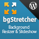 bgStretcher WordPress Bg Image Resizer & Slideshow - CodeCanyon Item for Sale