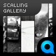 Scaling Gallery - ActiveDen Item for Sale