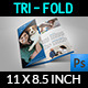 Veterinarian Clinic Brochure Template - GraphicRiver Item for Sale