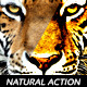 7 Natural Action - GraphicRiver Item for Sale