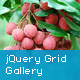 jQuery Fullscreen Grid Gallery - CodeCanyon Item for Sale