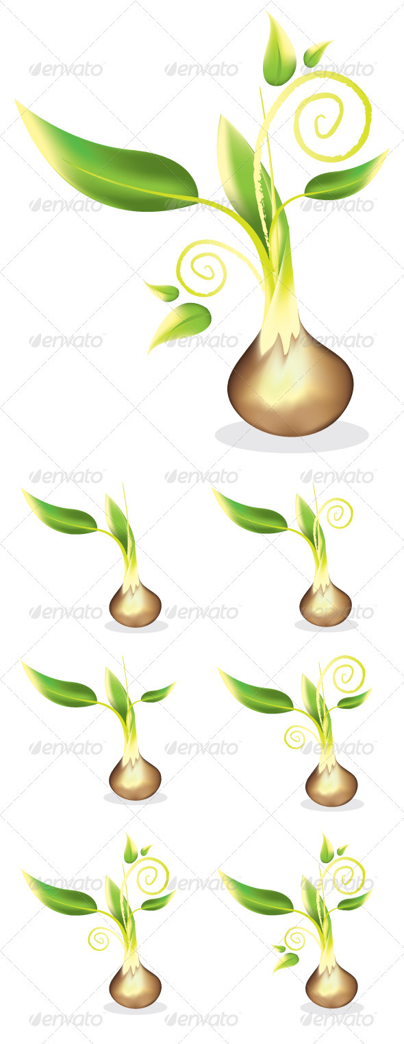 Graphic River Young Seed Sprout Vectors -  Conceptual  Nature  Flowers & Plants 607396