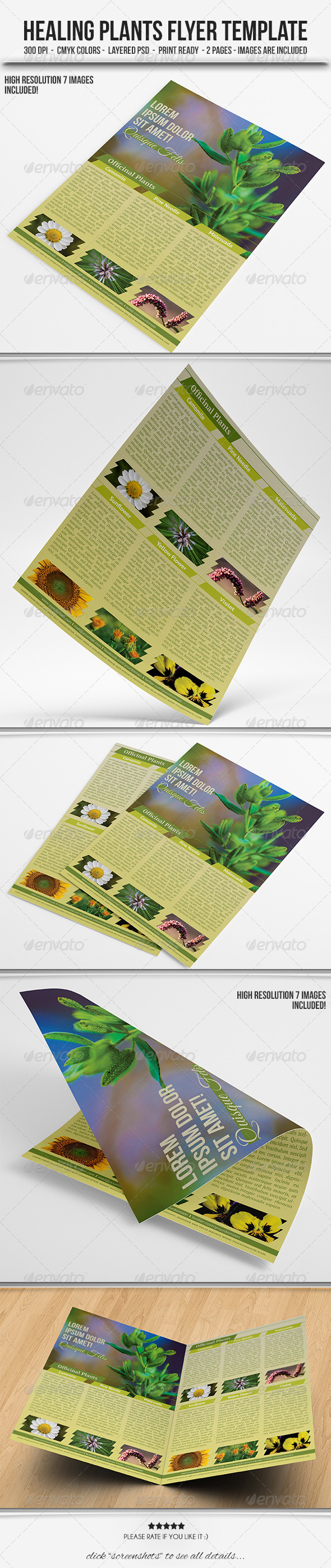 GraphicRiver Healing Plants Flyer Template 4903586