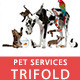 Pet Services Trifold - GraphicRiver Item for Sale