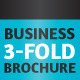 Business 3-Fold Brochure - Multi Color InDesign - GraphicRiver Item for Sale