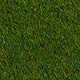 Realistic Autumn Grass - 3DOcean Item for Sale