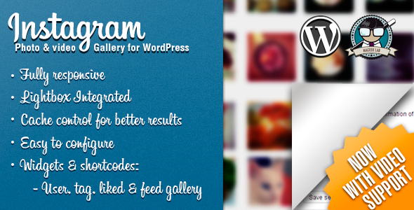 instagram plugin wordpress mageeklab