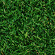 Tileable Grass Texture Pack - GraphicRiver Item for Sale