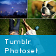 Tumblr Photoset Grid/Masonry Gallery for WordPress - CodeCanyon Item for Sale