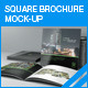 Square Brochure Mock-up - GraphicRiver Item for Sale