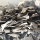 Burnt Pieces of Paper - VideoHive Item for Sale