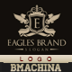 Eagles Brand Logo Template - GraphicRiver Item for Sale