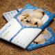 Business Card Veterinary - GraphicRiver Item for Sale