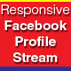 Responsive Facebook Profile Stream Joomla Module - CodeCanyon Item for Sale