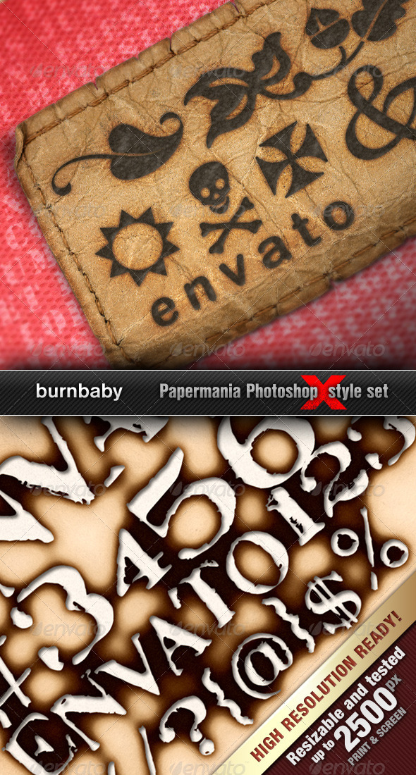 GraphicRiver Realistic Burned Styles BurnBaby 682215