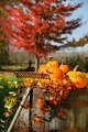 Autumns colorful harvest - PhotoDune Item for Sale
